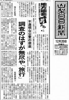2010-12-20_sannichi.jpg